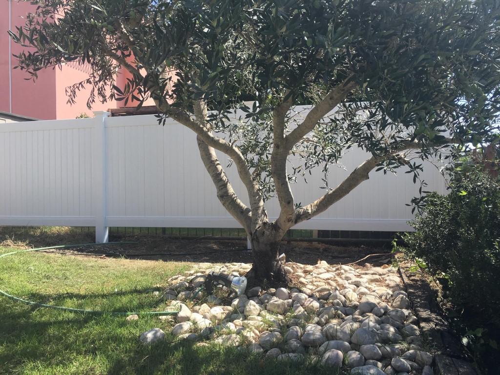 גדרות ויניל לגינה בחיפה והקריות (1)